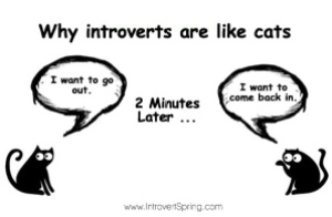 why-introverts-are-like-cats.jpg